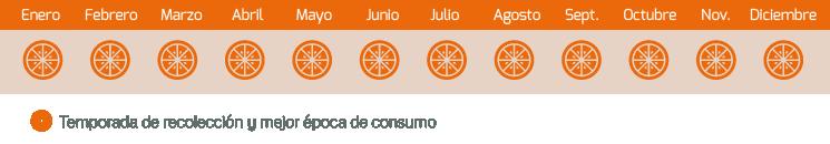 calendario naranja