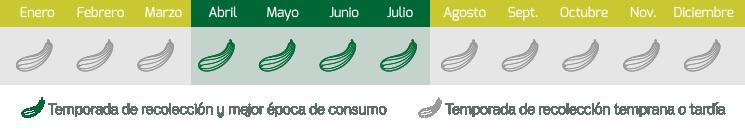 calendario calabacin