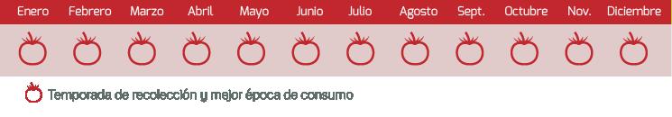 calendario tomate