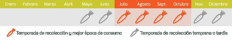 calendario zanahorias