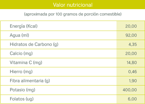 tablas nutricionales_calabacin