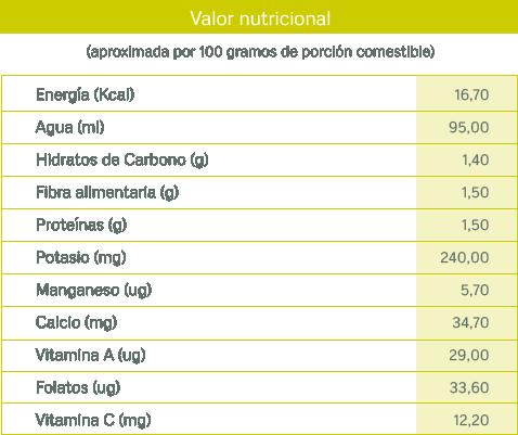 tablas nutricionales_lechuga