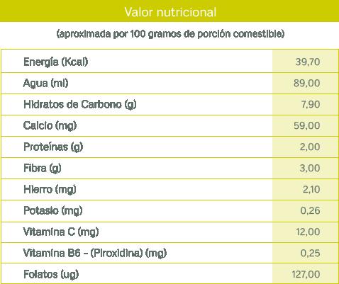 tablas nutricionales_puerro